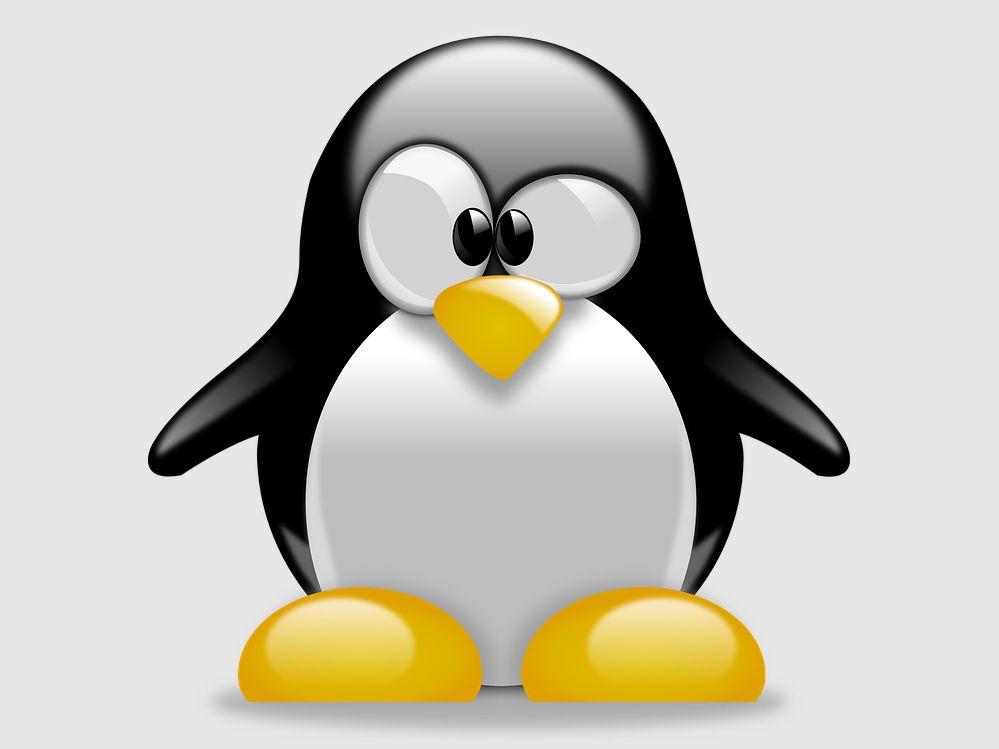 Was macht eigentlich Linus Torvalds?