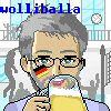 wolliballa